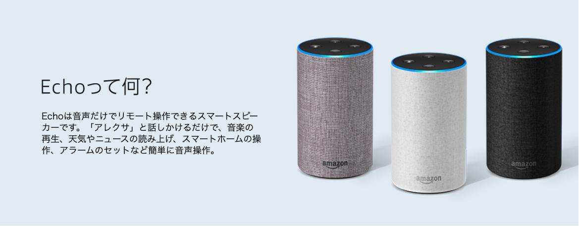 Amazon echoの写真